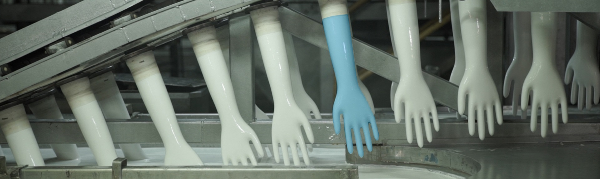 Clean room gloves being made -Ansell